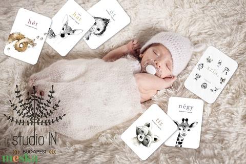 Állatos Baba fotó kártya, babaköszöntő kártyák, Milestone card, mérföldkő kártya, baba fotó kártya ajándék  (Studioin) - Meska.hu