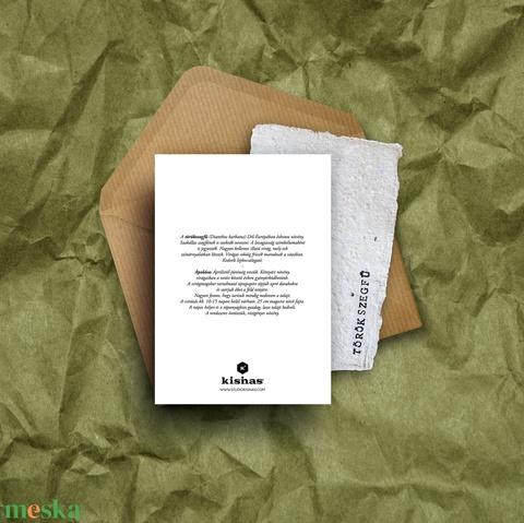 Paperplant üdvözlőlap virágmagokkal, törökszegfű (StudioKisinas) - Meska.hu
