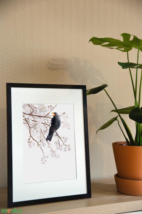 Virágzó faágon éneklő hím fekete rigó - A4 giclée művészeti nyomat - Meska.hu