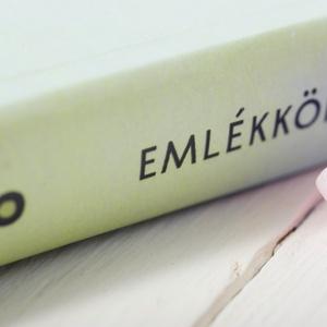 Elegáns, egyedi esküvői, eljegyzési emlékkönyv, vendégkönyv, napló halványzöld-zöld színekben (agnescor) - Meska.hu