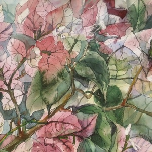 Bougainvillea, 2021, Művészet, Festmény, Festmény vegyes technika, Festészet, Fotó, grafika, rajz, illusztráció, Filctoll, akvarell, papír, 34.5 x 25 cm, Meska