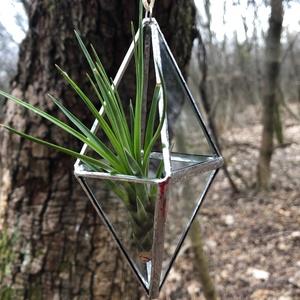 Üveg Függő Florárium, Terrárium, Váza, Újrahasznosított, Otthon & Lakás, Dekoráció, Függődísz, Újrahasznosított alapanyagból készült termékek, Üvegművészet, Üveg függő florárium újrahasznosított ablaküvegből. Légnövények, azaz tillandsiák szívesen lakják, d..., Meska
