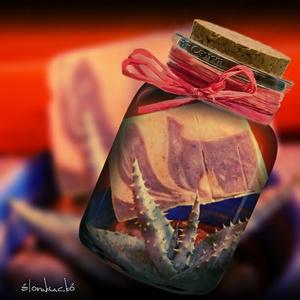 Aloe vera - citromfű szappan szőlőmag olajjal (alomkucko) - Meska.hu