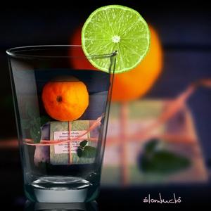 Menta-citrom szappan szőlőmag olajjal (alomkucko) - Meska.hu