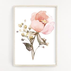 Virágos dekor poszter A4 - Botanikai illusztráció - vízfesték hatással, Otthon & Lakás, Dekoráció, Kép & Falikép, Fotó, grafika, rajz, illusztráció, Papírművészet, Virágos dekor poszter A4 - Botanikai illusztráció - vízfesték hatással (No.25)\n\nSzoba, nappali dekor..., Meska