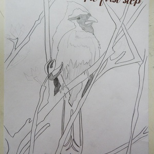 Kardinális pinty madár fa intarzia (Andulino) - Meska.hu