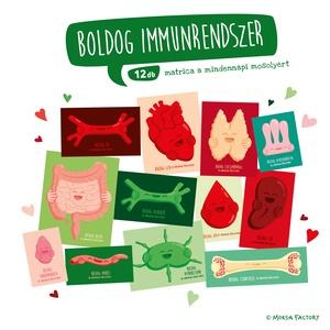 Boldog Immunrendszer - matrica csomag / szív / lép / nyirokcsomó / nyirokrendszer / szeretet / immunerősítés / szervek, Művészet, Más művészeti ág, Mindennapos boldogság és egészségtudat egy matrica barátságával!   Ajándékozd meg szeretteidet, bará..., Meska