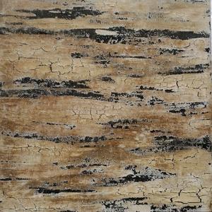 Fakéreg, Művészet, Festmény, Festmény vegyes technika, Festészet, 70x70cm 3D feszített vászonra készült absztrakt, struktúrált kép, akril festéssel.\nFekete-bronz-barn..., Meska