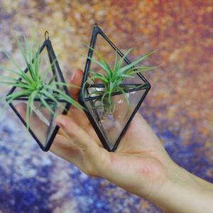 Geometrikus terra növénytartó szukkulenseknek, tinlandsia üveg tiffany ólomüveg technikával, Otthon & lakás, Lakberendezés, Dekoráció, Üvegművészet, \nEgy kis természetet varázsol az otthonunkba geometrikus formában :)\nTöbb méretben is kérhető!\n\nFont..., Meska