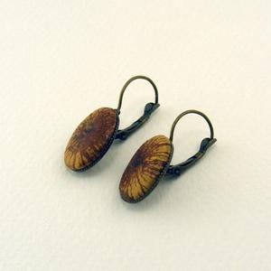 Ligna ovale fülbevaló, Ékszer, Fülbevaló, Uszadékfából készült, antikolt bronz színű fülbevalópár, bronz színű akasztókkal. -dísz mérete: 18*1..., Meska