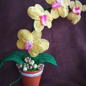 Horgolt orhidea cserépben, Otthon & lakás, Dekoráció, Dísz, Lakberendezés, Asztaldísz, Horgolás, Horgolt technikával készült orhidea szárat kerámia cserépbe helyeztem, majd termésekkel, kövekkel dí..., Meska