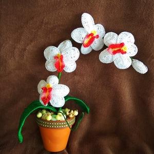 Horgolt orhidea cserépben, Otthon & lakás, Dekoráció, Dísz, Lakberendezés, Asztaldísz, Horgolás, Horgolt orhideát kerámia cserépbe helyeztem, majd köré terméseket raktam, ezzel feldobva kivsit a dí..., Meska