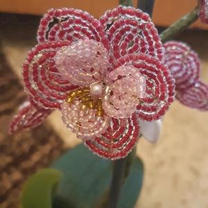 Gyöngy orchidea, Otthon & Lakás, Dekoráció, Dísztárgy, Gyöngyfűzés, gyöngyhímzés, Gyöngyből készült bordó orchidea, rózsaszín középpel 5 db virággal.\nMagassága kaspóval együtt: 32 cm..., Meska