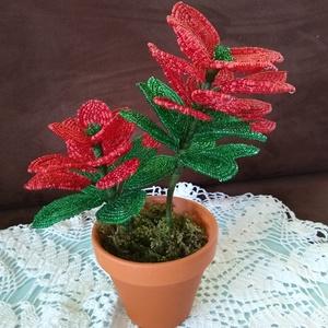 Virág gyöngyből  , Csokor & Virágdísz, Dekoráció, Otthon & Lakás, Gyöngyfűzés, gyöngyhímzés, A mikulásvirágot drót és 2 mm-es kásagyöngyből készítettem. A kompozíciót két szár egy 13 cm és egy ..., Meska