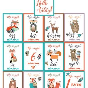 Baba fotó kártya szett - Baby milestone kártyák állatos szett, Gyerek & játék, Baba-mama kellék, Otthon & lakás, Dekoráció, Kép, Fotó, grafika, rajz, illusztráció, Papírművészet, Saját készítésű fotó kártyák, úgynevezett milestone card-ok, melyek segítségével beszédessé teheted ..., Meska