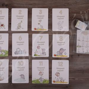 Babakártya/ Mérföldkőkártya Ikres, Gyerek & játék, Baba-mama kellék, Fotó, grafika, rajz, illusztráció, Szeretnéd megörökíteni gyermeked növekedését?\n\nAkkor használj a hónapforduló alkalmával a fotózáshoz..., Meska