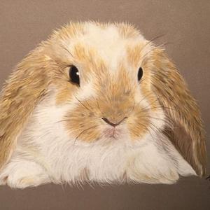 Nyuszi/Bunny (pastel), Képzőművészet, Otthon & lakás, Festmény, Pasztell, Festészet, Eredeti pasztell kép, keret nélkül./\nOriginal pastel painting, without frame.\nMéret/Size: A5 (21x14,..., Meska