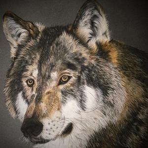 Farkas/Wolf, Képzőművészet, Otthon & lakás, Festmény, Pasztell, Dekoráció, Festészet, Zsűrizett eredeti festmény/Jury painting\n(Minősítés/Rating code: TM-A-46/215/2018)\nMérete/Size: A3 (..., Meska