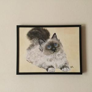 Himalája cica (olaj) - művészet - festmény - olajfestmény - Meska.hu