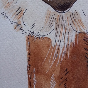 BarnaPaka - tűfilces akvarell kép, natúr fenyő képkeretben, Akvarell, Festmény, Művészet, Festészet, Újabb képem borzos alpakáról akvarell technikával. A festmény 250 gr-os akvarellpapírra készült, dís..., Meska