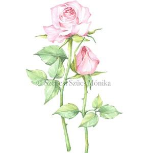 Rózsa - Print (Akvarell), Művészi nyomat, Művészet, Festészet, Fotó, grafika, rajz, illusztráció, Az eredeti illusztráció akvarellel készült, a print jó minőségű, A/4-es, 250 g/m2-es papírra van nyo..., Meska