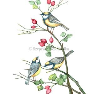 Cinegék - Print (Akvarell), Képzőművészet, Otthon & lakás, Festmény, Dekoráció, Kép, Festészet, Fotó, grafika, rajz, illusztráció, Az eredeti illusztráció akvarellel készült, a print jó minőségű, A/4-es, 250 g/m2-es papírra van nyo..., Meska