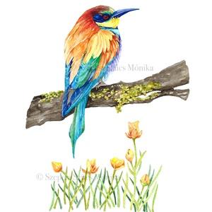 Gyurgyalag - Print (Akvarell), Otthon & lakás, Képzőművészet, Festmény, Illusztráció, Festészet, Fotó, grafika, rajz, illusztráció, Az eredeti illusztráció akvarellel készült, a print jó minőségű, A/4-es, 250 g/m2-es papírra van nyo..., Meska