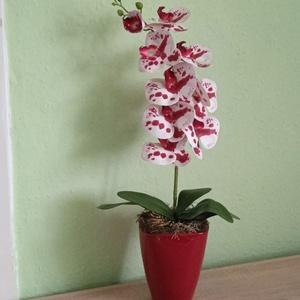 Orchidea, örök orchidea, cserepes virág, gumi orchidea, Otthon & Lakás, Dekoráció, Asztaldísz, Virágkötés, Örök orchidea - pöttyös lepke orchidea\n*******************************************\nEl nem hervadó, g..., Meska