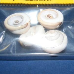 Natúr kagyló/csiga (6. minta/4 db) - fehér csiga (csimbo) - Meska.hu