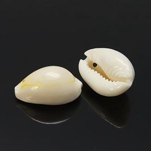 Natúr kagyló/csiga (48. minta/10 db) - fúrt (csimbo) - Meska.hu