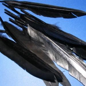 Dekorációs indián toll-6 (10 db) - fekete (csimbo) - Meska.hu