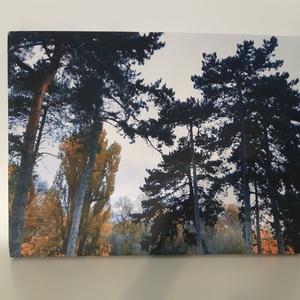 Narancs fa-Őszi erdő vászonkép - otthon & lakás - dekoráció - kép & falikép - Meska.hu