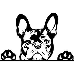 Francia bulldog (2) autómatrica, Dekoráció, Otthon & lakás, Falmatrica, Lakberendezés, Fotó, grafika, rajz, illusztráció, Mindenmás, Francia bulldog (2) autómatrica\n\nA matricát több méretben és 100 színben kérheted.\nA színmintát a ké..., Meska