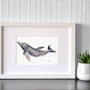 Delfin - ecsetfilc festmény (nyomat), Otthon & lakás, Képzőművészet, Festmény, Akvarell, Festészet, Delfin - művészeti nyomat 190g-os papíron az eredeti ecsetfilc festmény alapján (giclée technikával ..., Meska