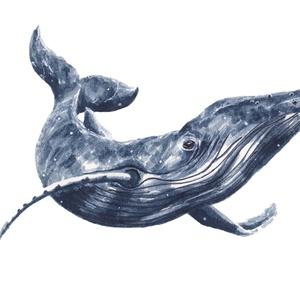Hosszúszárnyú bálna (óceán kolleckció) - ecsetfilc festmény (nyomat), Otthon & lakás, Képzőművészet, Festmény, Akvarell, Festészet, Hosszúszárnyú bálna (óceán kollekció) - művészeti nyomat 190g-os papíron az eredeti ecsetfilc festmé..., Meska