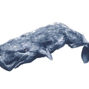 Ámbráscet (óceán kolleckció) - ecsetfilc festmény (nyomat), Művészet, Akvarell, Festmény, Festészet, Meska
