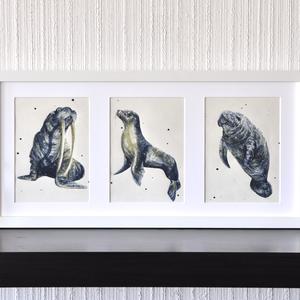 Fóka (óceán kollekció 2) - ecsetfilc festmény (nyomat) - művészet - festmény - akvarell - Meska.hu