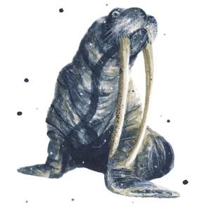 Rozmár (óceán kollekció 2) - ecsetfilc festmény (nyomat), Otthon & lakás, Képzőművészet, Festmény, Akvarell, Festészet, Rozmár (óceán kollekció 2)  - művészeti nyomat 190g-os papíron az eredeti ecsetfilc festmény alapján..., Meska