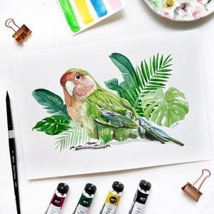 Rózsásfejű törpepapagáj  - akvarell festmény (nyomat), Művészet, Művészi nyomat, Festészet, Rózsásfejű törpepapagáj - művészeti nyomat 190g-os papíron az eredeti akvarell festmény alapján (gic..., Meska