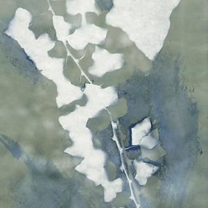 Borostyán - szignált giclée művészi nyomat, Otthon & lakás, Karácsony, Képzőművészet, Dekoráció, Ünnepi dekoráció, Karácsonyi dekoráció, Van Gogh kedvenc növénye, a borostyán ihlette az eredeti cianotípiát, amelyről kiváló minőségű, 190 ..., Meska