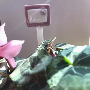 Tábla fűszer kertbe - üveg - tartós - írható - cserépbe tűzhető -tavaszi hangulat - sokféle színvariáció - balkonláda, Otthon & lakás, Lakberendezés, Kerti dísz, A képen látható termék egy fűszernövény kertbe való  üveg táblácska, millefiore virággal, amire felí..., Meska