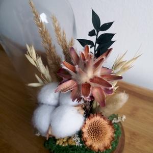 Szárazvirág kompozíció üvegbúra alatt gyapotvirággal, Otthon & Lakás, Dekoráció, Csokor & Virágdísz, Szárított virágokból készült virágdísz, üvegbúra alatt, fa alátéten.  Az üvegbúra magassága 200 mm, ..., Meska