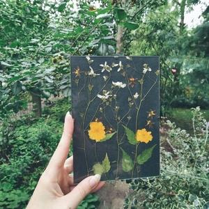 Tajtékos napok - préselt virág dekoráció, Otthon & lakás, Dekoráció, Kép, Csokor, Ünnepi dekoráció, Virágkötés, Szereted a növényeket, de gyakran utazgatsz, ezért nincs sok időd foglalkozni velük? Akkor neked egy..., Meska