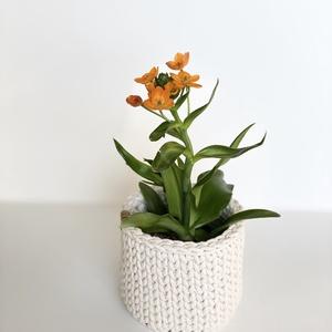 Kaspó ekrü színben, Otthon & lakás, Lakberendezés, Dekoráció, Kaspó, virágtartó, váza, korsó, cserép, Tárolóeszköz, Kosár, Horgolás, Ez az egyedi kaspó biztosan feldobja a szoba hangulatát. Ha nem virágot szeretnél benne tartani, akk..., Meska