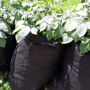 Ültető zsák 30 cm átmérőjű x 70 cm magas / burgonya és édesburgonya termesztéséhez, Növény & Veteményes, Ház & Kert, Otthon & Lakás, Varrás, Ültetőzsák, teraszra, balkonra, kis méretű kertekbe.\nAlkalmas burgonya, édesburgonya termesztéséhez...., Meska