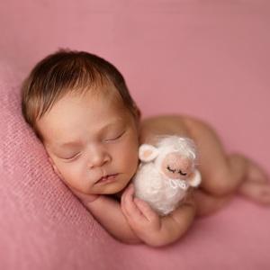 Nemez bárányka, Egyéb, Nemezelés, Babafotózáshoz ideális kellék lehet , nem gyermek játék, Meska