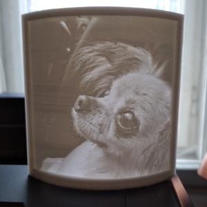 3D nyomtatott litofán, Művészet, Portré & Karikatúra, Portré, Mindenmás, Kérd emlékbe, vagy akár ajándékba szeretteidnek vagy magadnak! Örökíts meg egy csodás pillanatot, cs..., Meska
