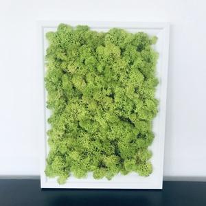 Gondozásmentes izlandi  zuzmó falikép 21x30 cm nászajándék ötlet (Gondozasmentes) - Meska.hu
