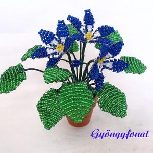 Kék-fehér  fokföldi ibolya gyöngyből, cserepes virág , Dekoráció, Otthon & lakás, Dísz, Lakberendezés, Gyöngyfűzés, gyöngyhímzés, Virágkötés, 3,5 cm átmérőjű cserépbe készítettem ezt a kis díszt. A virágokat kék, fehér és zöld  2 mm-es cseh k..., Meska