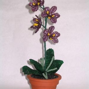 Lila orchidea  cserépben, asztali dísz (gyongyfonat) - Meska.hu